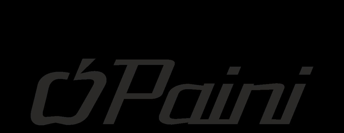 <p>PAINI</p>
